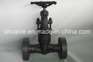 API 602 Flanged Connection Forged Globe Valve