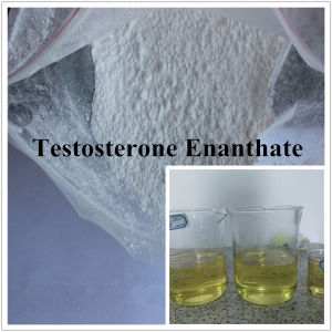 99.5% Top Purity Gain Muscle Steroid Powder Testosterone Enanthate pictures & photos