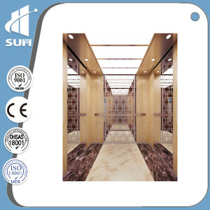 with Small Machine Room Vvvf Etching Cabin Residential Elevator pictures & photos