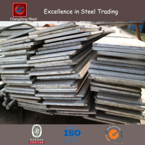 A36 Hot Rolled Mild Steel Flat Bar (CZ-F75) pictures & photos