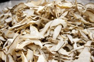 Best Selling Dried Mushroom Slice Manufacturing pictures & photos