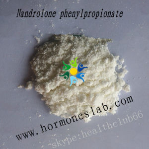 Hormone Steroid Nandrolone Phenylpropionate 62-90-8 From China