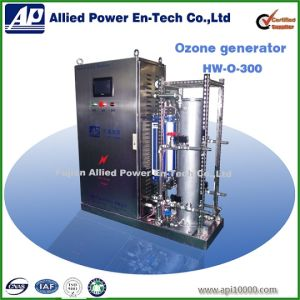 300g Ozone Generator for Water Treatment Equipment pictures & photos
