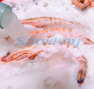 Processing Machinery Liuqid Ice Maker Seawater on Land pictures & photos