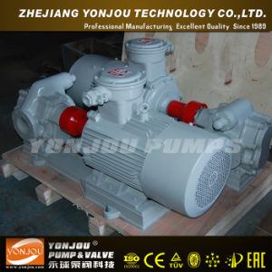 Petrol Gear Oil Pump, Pump for Oil, Fuel Oil Pump KCB pictures & photos