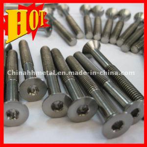 Titanium Screw in High Quality pictures & photos