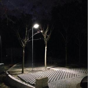 Bluesmart Solar Lighting Garden Light with LED Solar Light Balls pictures & photos