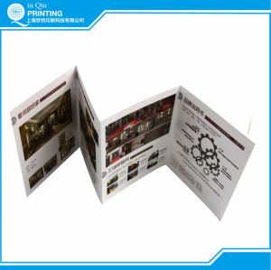 Professional Full Color Flyer Printing Services pictures & photos