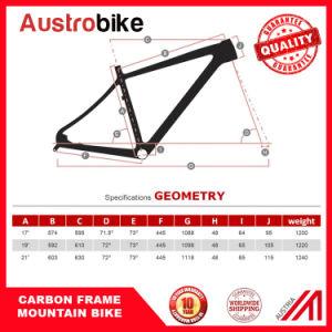 "29""Mountain Bike Carbon Fiber Frame pictures & photos"