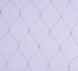 Quality Nylon Monofilament Net 0.30mm pictures & photos