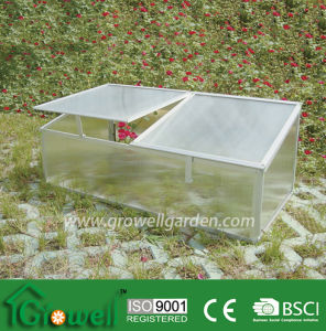 Cold Frame Greenhouse for Young Plants Growing (C202) pictures & photos