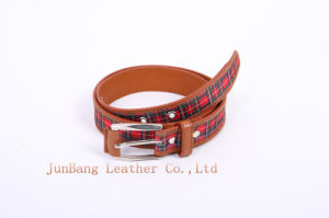 High Quality Polyester Webbing and PU Belt pictures & photos