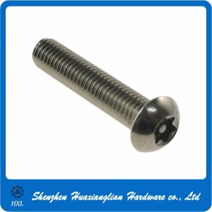 Stainless Steel Torx Pan Head Screw pictures & photos