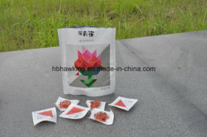 Vacuum Bag or Pouch for Leisure Food pictures & photos