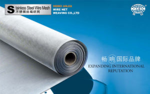 S. S. 304 Woven Wire Filter Netting pictures & photos