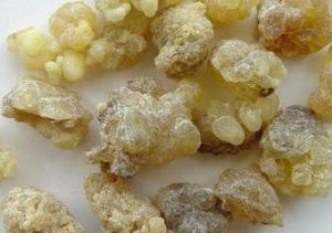 Boswellia Serrata Extract Boswellia Extract pictures & photos