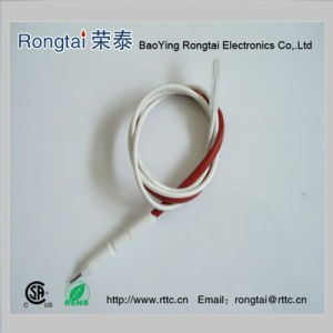 Ignition Electrode for Gas Cooker (Russia) pictures & photos