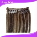 Straight Brazillian Remy Clip in Hair Extension for Black Women pictures & photos