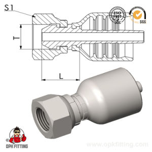 Bsp Female 60° Cone One Piece Fitting (22611y) pictures & photos
