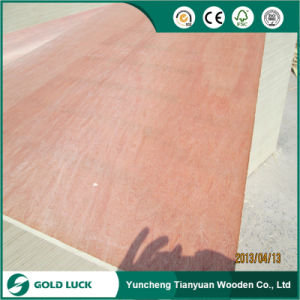 Shandong Low Price Packing Grade Plywood for Pallet pictures & photos