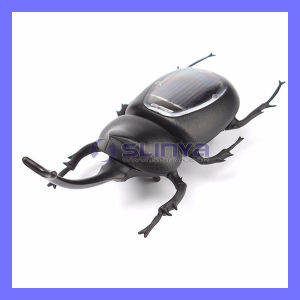 Eco-Friendly Funny No Need Battery Mini Educational Beetle Solar Toy for Kids pictures & photos
