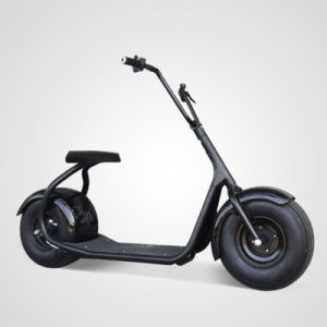 City Scooter Hub Electric Motorcyle 18*9.5inch Tire Size Hydraulic Brake