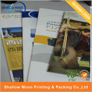 Customized Company Catalogu Printing (QYZ396) pictures & photos