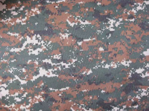 Fy-DC18 600d Oxford Digital Camouflage Printing Polyester Fabric pictures & photos