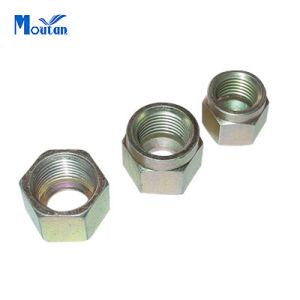 Carbon Steel Hex Special Nut