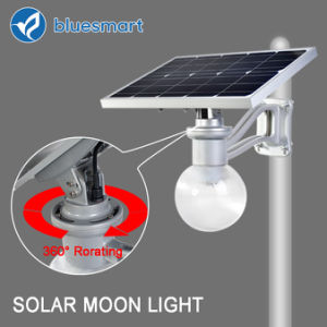 Bluesmart 6W 600-720lm 50000h Lifespan Outdoor Solar LED Garden Light pictures & photos