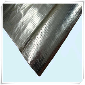 Perforated Woven Fabrics Coated Foil for Radiant Barriers and Insulation pictures & photos