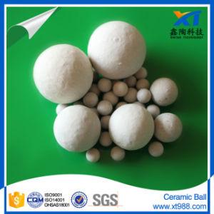 Inert Ceramic Ball pictures & photos