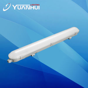 Triproof IP65 LED Yl05 Ceiling Light pictures & photos