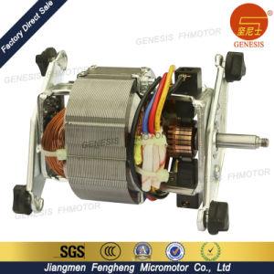 Small Appliances Electric Motors pictures & photos