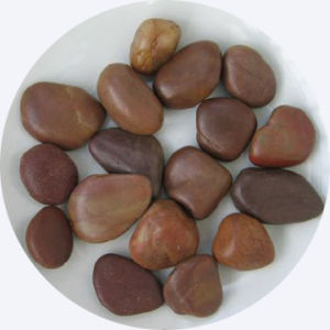 Natural Pebble/River Pebble/Garden Pebble (YY-SP007) pictures & photos