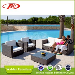Fantastic Outdoor Sofa Set (DH-1055) pictures & photos