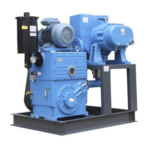 Rotary Piston Vacuum Pump for Industrial Vacuum Heat Treatment pictures & photos