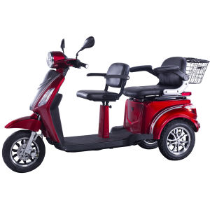 The Hot Selling E-Tricycle for Two Person