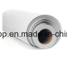 Auto Vinyl PVC Self Adhesive Vinyl PVC Film (180mic 120g relase paper) pictures & photos