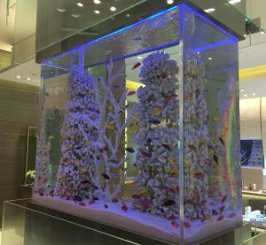 Top Quality Decorative Acrylic Aquarium Fish Tank