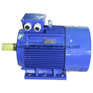 Y2 Series 3-Phase Electric Motors for Industry pictures & photos