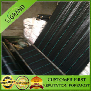 Black PP Woven Anti Grass Mat pictures & photos