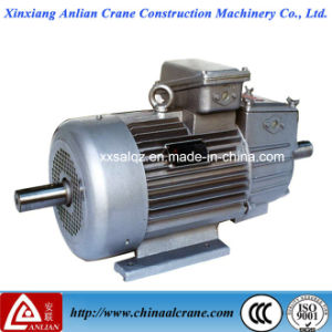 Double Output Shaft Electric Three Phase AC Motor for Sale