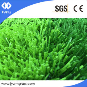 50mm Spine Yarn Shape Artificial Grass pictures & photos