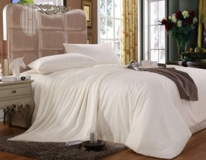 Taihu Snow OEM Oeko-Tex 100 High Quality Bed Linen 100% Mulberry Silk Quilt pictures & photos