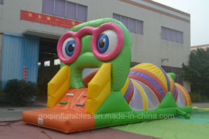 Lovely Inflatable Insects Obstacle Bouncer (aq2001-1) pictures & photos