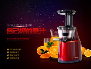 Super Low Speed 43 Rpm Slow Juicer