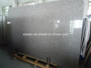 Chinese Natural Bainbrook Brown Granite G664 pictures & photos