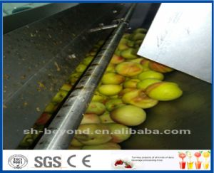 peach processing line pictures & photos