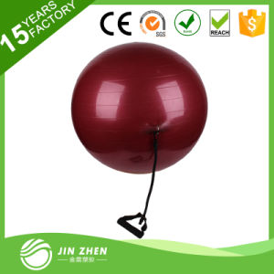 Big Soft Yoga Gym Ball with Rubber Handle Custom Logo pictures & photos